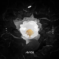 avici_cover